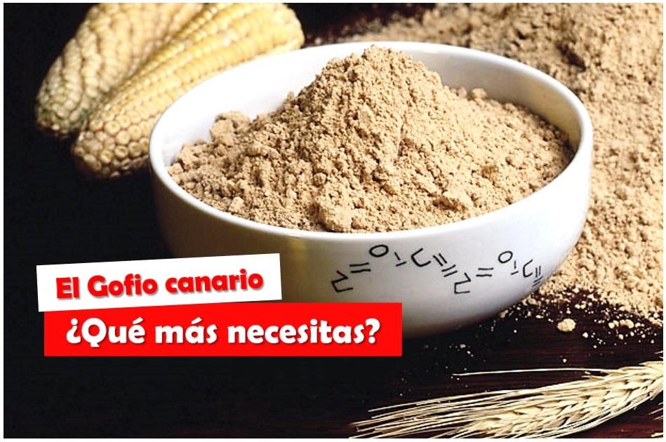 El Gofio Canario Por Qué Debes Incluirlo En Tu Dieta